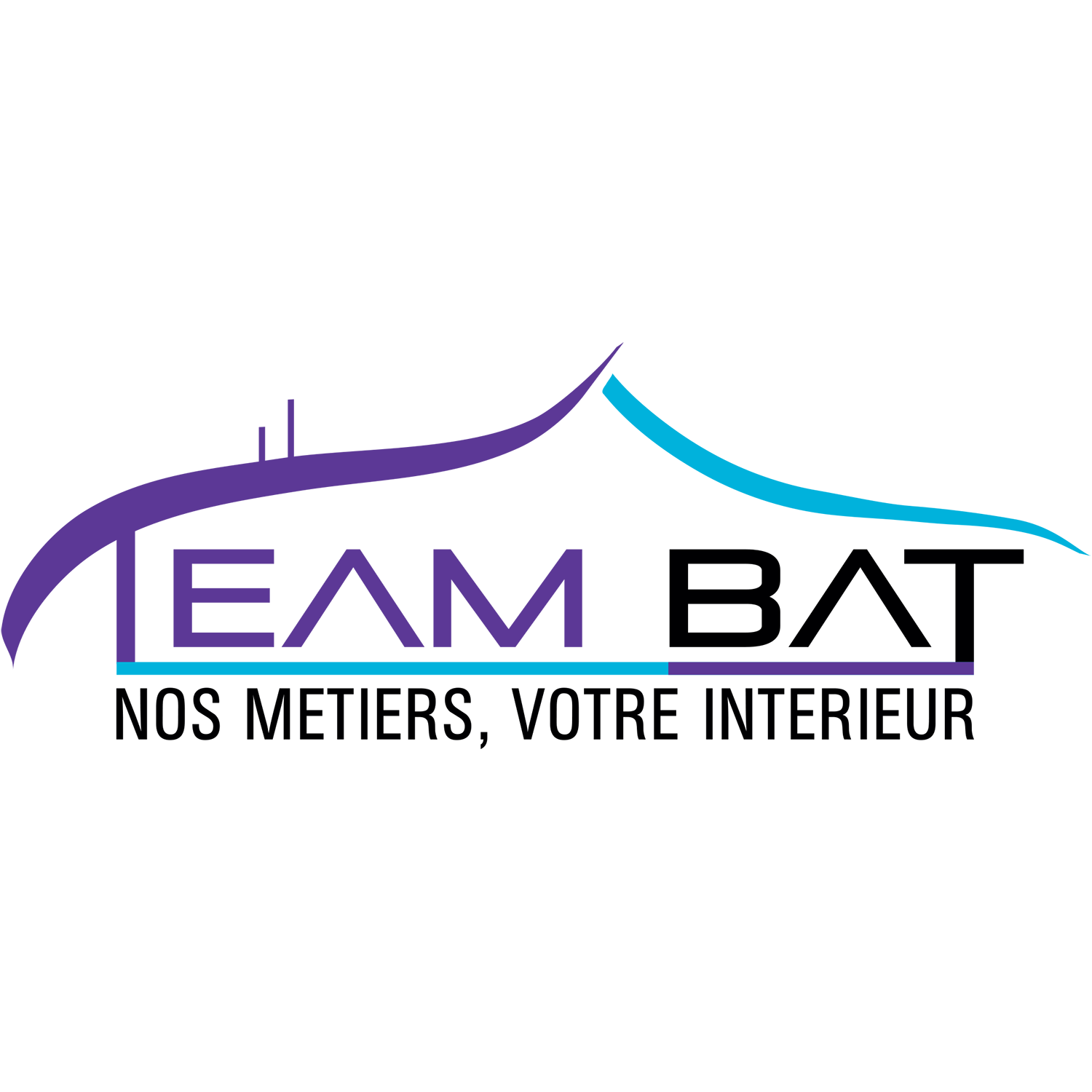 https://www.asfontonne-antibes.com/wp-content/uploads/2020/02/team-bat.png